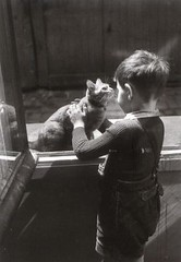 FI-489563 05-03-09 (mailfan) Tags: boy blackandwhite paris france cat photo child postcard postcrossing photograph ronis willyronis soffa79