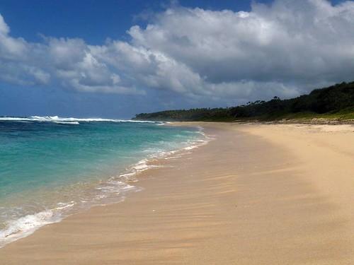 Vanuatu : Ile de Tanna #82 : whitesand