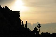 (karolajnat) Tags: sunset tree green stone nikon asia south east angkor bayon kambodia d300