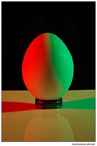Egg, Day 6