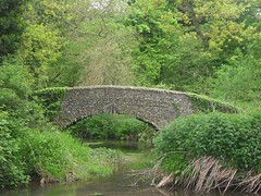 bridge (Leatherhead, United Kingdom) Photo