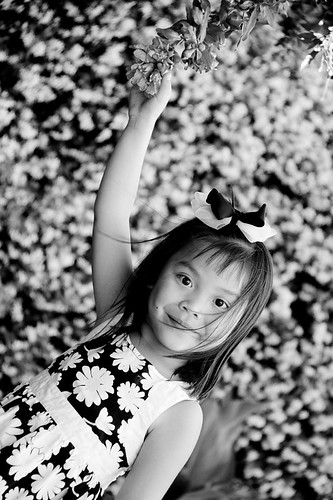 Chloe Under Pomegranate Tree B/W