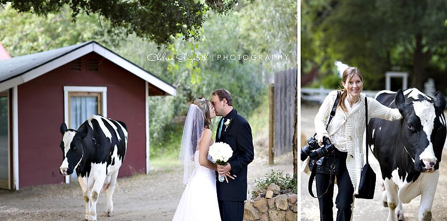 Wedding Crasher Calamigos Ranch