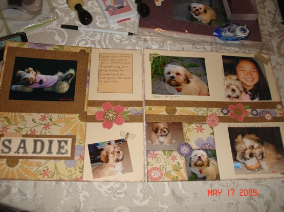 sadie layout 5-17-09