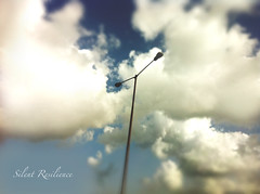 Head in the Clouds, Lights in the Sky. (Silent Resilience) Tags: blue sky india lamp clouds lights pov lamppost monsoon tall mumbai farah rains lowangle iphone4 silentresilience cameraplus