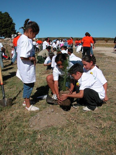 Children planting trees.