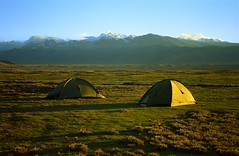 Did not take pictures at night, (reurinkjan) Tags: 2002 yak nature nikon tibet everest dri tingri jomolangma tibetanlandscape lammala janreurink norrdzi lapchigang བོད། བོད་ལྗོངས།