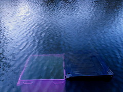 purple (blopsmen) Tags: london water canal cg agua purple container explore sunk abandonment contenedor abandono auga tcf sumergido regents