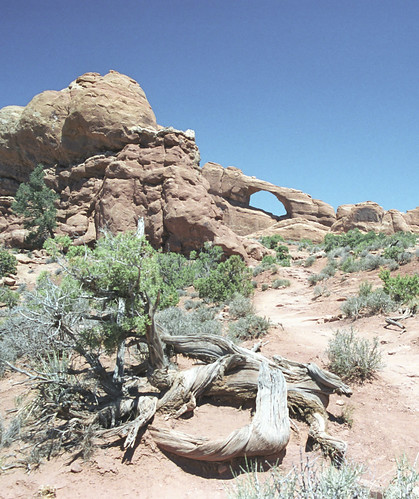 Arches National Park_03