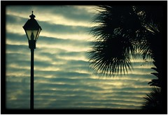 Crazy Clouds ( dragonflyriri  (Limited Flickr Time)) Tags: light sky black tree nature lamp silhouette clouds 50mm ripple palm lantern thingie img9634