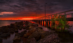 Under the Boardwalk......... (Reedy Photography) Tags: sky cloud beach reed beautiful skyline clouds sunrise canon bay michael australia queensland 40d