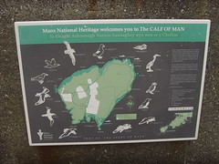 Calf of Man Wildlife (Isle of Man Queenie Festival) Tags: isleofman porterin
