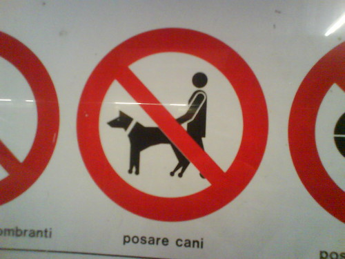 Posare cani
