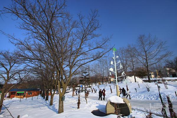 2009北海道-D5-3-旭山動物園_90.jpg