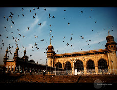 .Grandeur. (.krish.Tipirneni.) Tags: old sky india birds architecture flying high nikon arch many pigeons islam earlymorning tint mosque historic ap hyderabad majestic iconic oldest mecca masjid largest islamic hpc southindia islamicarchitecture hyd grandeur andhrapradesh meccamasjid 18200vr d80 islamcultureandpeople