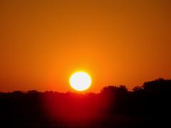 Sunrise Malilangwe