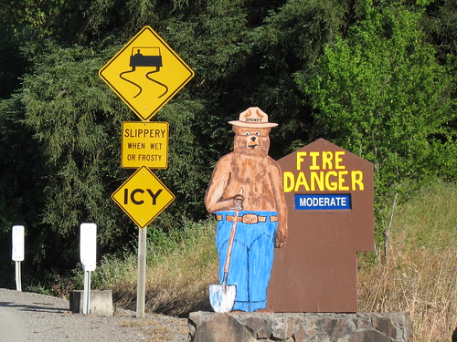 Smokey the Bear's Fire Danger Report