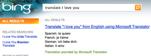 Bing Translator Answer