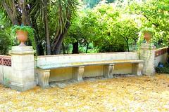 Orto Botanico di Palermo (I_Gautheron) Tags: palermo sicilia ortobotanico