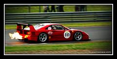 Ferrari F40 LM (Laurent DUCHENE) Tags: sport ferrari collection 2009 f40lm vigeant