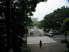 Shinobadzu (Pond) Uyeno Tokio