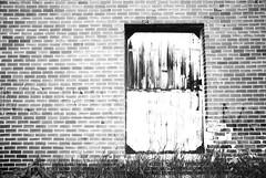 sweet leaf (Sarah Anderson☮Ostaff) Tags: door blackandwhite bw ontario brick grass graffiti overexposed thunderbay users olddoor drugabuse lockeddoor nikond80