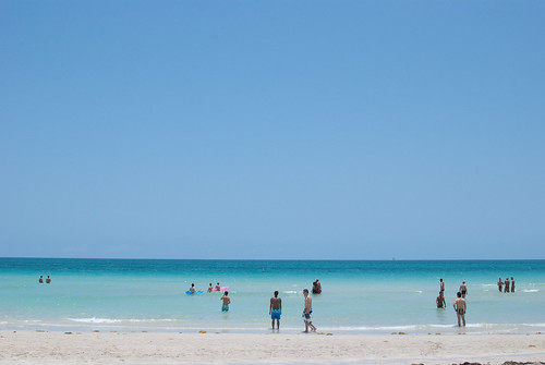 beachbums