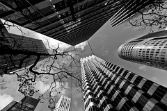 Trippin' Out Of My Senses (Jeremy Brooks) Tags: sanfrancisco california urban blackandwhite bw usa building architecture buildings blackwhite cityscape blogged fav10 sanfranciscocounty 444marketstreet 444market 1frontstreet 1front