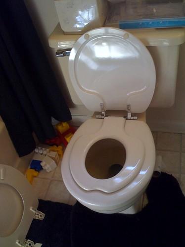Alyssa's new toilet seat