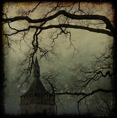 bones of winter (-justk-) Tags: winter copyright tree castle night dead landscapes branches bones kasteelvanhorst bej memoriesbook theunforgettablepictures goldstaraward hourofthesoul lesamisdupetitprince artistictreasurechest textureplayingwithbrushesthanks allmyimagesarecopyrightedallrightsreserveddonotusecopyandeditmyimageswithoutmypermission