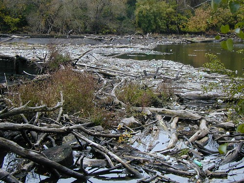debris build up at estabrook dam