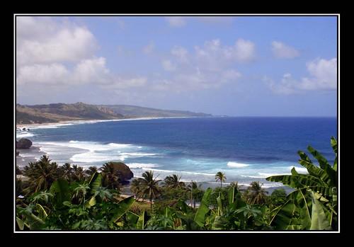Bathsheba on the East Coast of Barbados