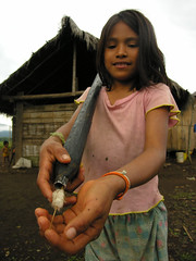280ANS161DSCN1618 (David Ducoin) Tags: native equateur enfant indien indigenas chasse amazonie indiens fillette indienne shuar jivaro amrindien moronasantiago indigne flche sarbacane amrindienne stluis flche amrindienne