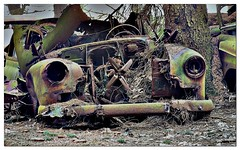 4 (jluk) Tags: rust belgium oldcars mousse rouille oxydation urbex cimetary chatillon vieillevoiture epave abandonnedcars