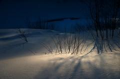 A silver lining (gcquinn) Tags: new snow robert club night woods crash accident geoff hampshire miller e quinn geoffrey doc dartmouth outing airplain mywinners quinnrobertquinn50th anniversarycrashdocdart pwgen