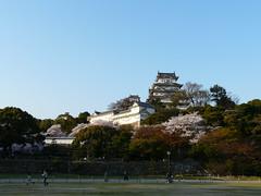 P1010573 (rs_the_rs) Tags: japan cherry blossoms himeji hanami kirschbluete