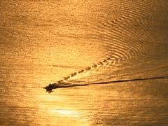 Attimo... (marta T.) Tags: barca mare alba sole acqua riflessi miele sangue oro onde segno scia attimo