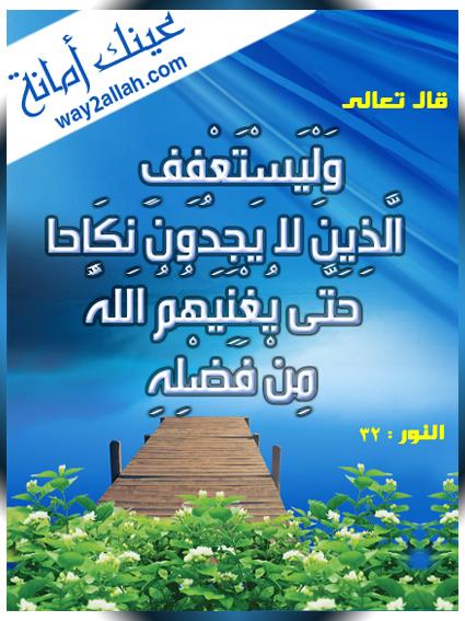 ���� ����� ���� ������ ���� 3488939627_31365b6848_o.jpg