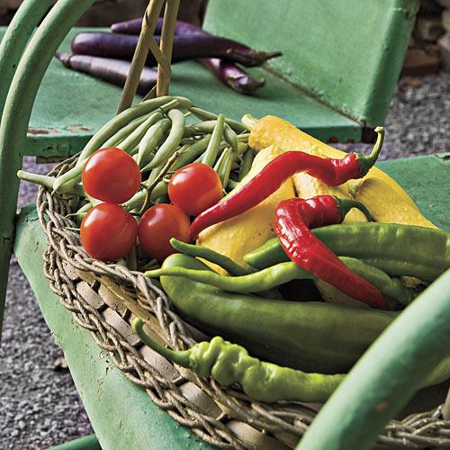 veg garden, southernliving 3