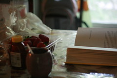 No one belongs here more than you. (heymamawolf) Tags: life lighting reading strawberries calm literature honey simplicity expressionism melancholy infinite lifeisbeautiful hottea mirandajuly subtleties