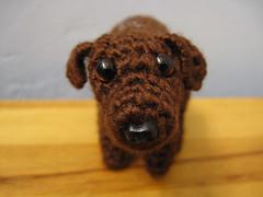 Sweet Poopy Face (spsandsteel) Tags: dog puppy crochet dump poop poo amigurumi feces pooping defacating