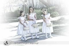 The Three Little Graces (DB-Photography) Tags: sanfrancisco california wedding photographer fremont bow sanfranciscobayarea acr flowergirl weddingphotographer weddingphotography sanfranciscoweddingphotographer bestofweddings davidball bridalphotography californiaweddingphotographer sanfranciscoweddingphotography realweddings bridalphoto realwedding northerncaliforniaweddingphotographer affordableweddingphotography davidballphotography affordableweddingphotographer ©davidballallrightsreserved sanfranciscobayareaweddingphotography sanfranciscobayareaweddingphotographer affordableweddingphotographers