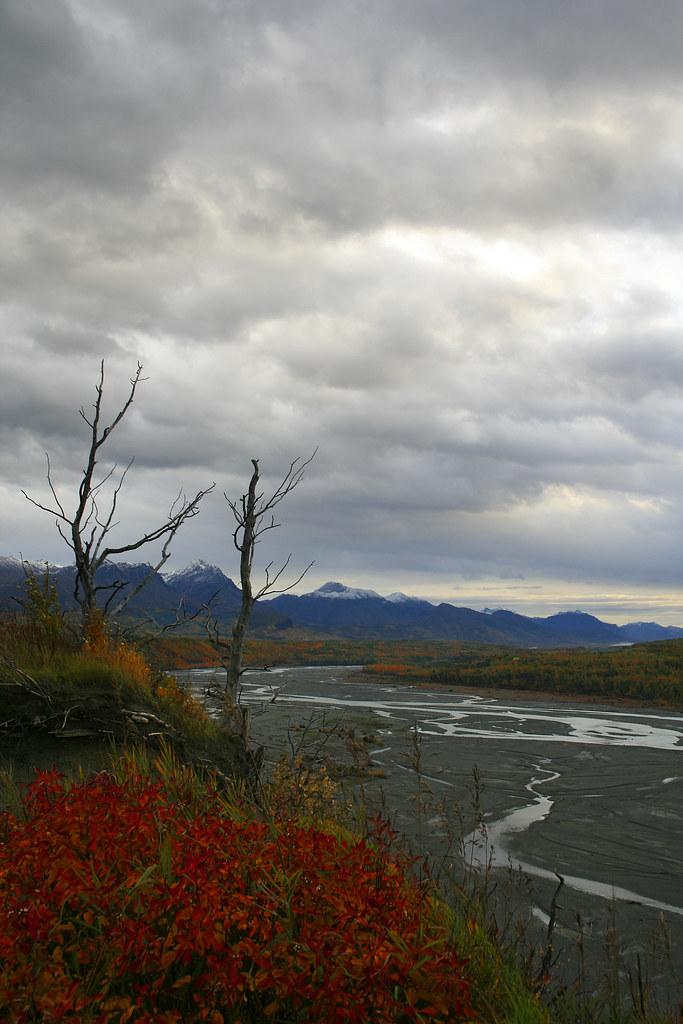 Alaska 2008 009