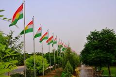 kurdistan flag (kezwan) Tags: flag ala erbil kurdistan kezwan hewlr