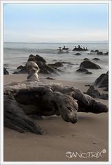 test shoot nd8 + nd8 + polarizador circular (Janotrix) Tags: atardecer mar madera agua nikon paisaje arena otoo nikkor grip seda vr rocas tome 18105 airelibre tom d90 viiiregion nd64 nd8 tomchile 18105mm mbd80 nikond90 efect