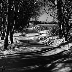 Shadow Land (Andrew Lockie) Tags: winter england snow shadows cotswolds chipping escarpment campden