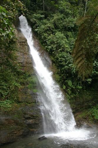 Chorrera del Indio. Cali, Colombia.