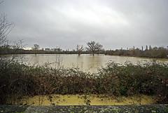 24 heures après la tempête qui a ravagé le Sud-Ouest de la France, une nouvelle dépression sannonce, porteuse de pluies abondantes, alors que les sols sont déjà saturés deau et que des cours deau ont commencé à sortir de leur lot.