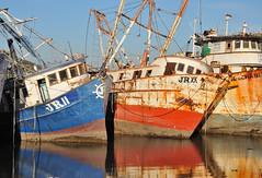 Fishing fleet aground, Guaymas, Sonora, Mexico, December 30, 2008 (Ivan S. Abrams) Tags: sonora mexico nikon nikkor nikondigital sancarlos seaofcortez gulfofcalifornia smörgåsbord ferromex golfodecalifornia seaofcortes onlythebestare ivansabrams trainplanepro nikond700 hotelplayadecortes nikon24120mmf3556gvr ivanabrams nikkor24120mmlens empalmenacionalesdemexico copyrightivansafyanabrams2009allrightsreservedunauthorizeduseprohibitedbylawpropertyofivansafyanabrams unauthorizeduseconstitutestheft thisphotographwasmadebyivansafyanabramswhoretainsallrightstheretoc2009ivansafyanabrams nikkor24120mmf35mmf3556gvr abramsandmcdanielinternationallawandeconomicdiplomacy ivansabramsarizonaattorney ivansabramsbauniversityofpittsburghjduniversityofpittsburghllmuniversityofarizonainternationallawyer