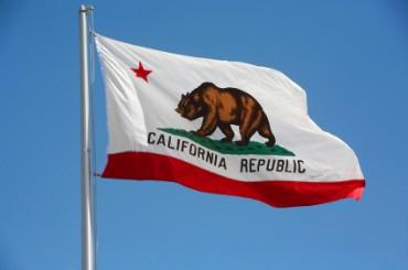 california-flag-bear